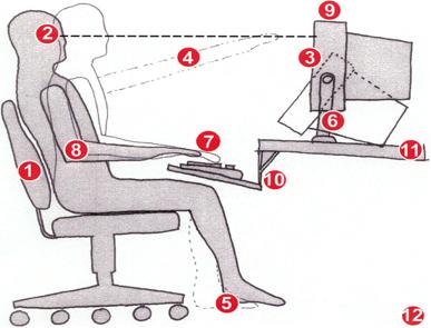 Ergonomics in the Workplace